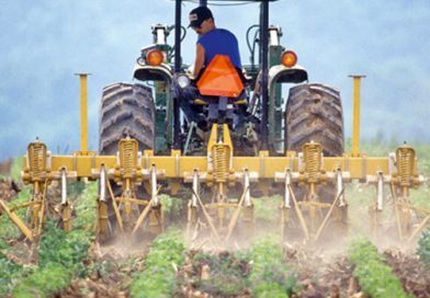 Beneficii pentru tinerii fermieri