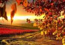 1 septembrie, prima Zi de Toamnă