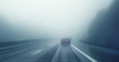 Cod galben de ceață densă în județul Neamț