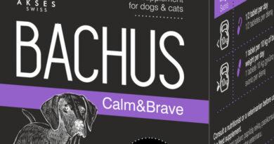 Ai auzit de Bachus? Iata mai multe despre medicamentul veterinar revolutionar recomandat de specialisti