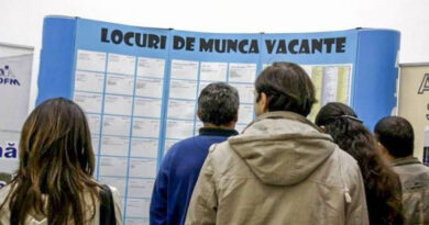AJOFM Neamț: 498 de locuri de muncă vacante în județul Neamț