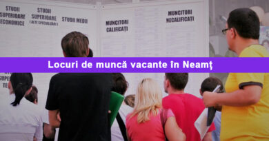 Sute de locuri de muncă la firmele din Neamț – actualizare 23 octombrie